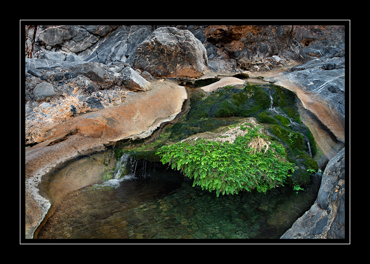 Rock Pool Wadi Qurai