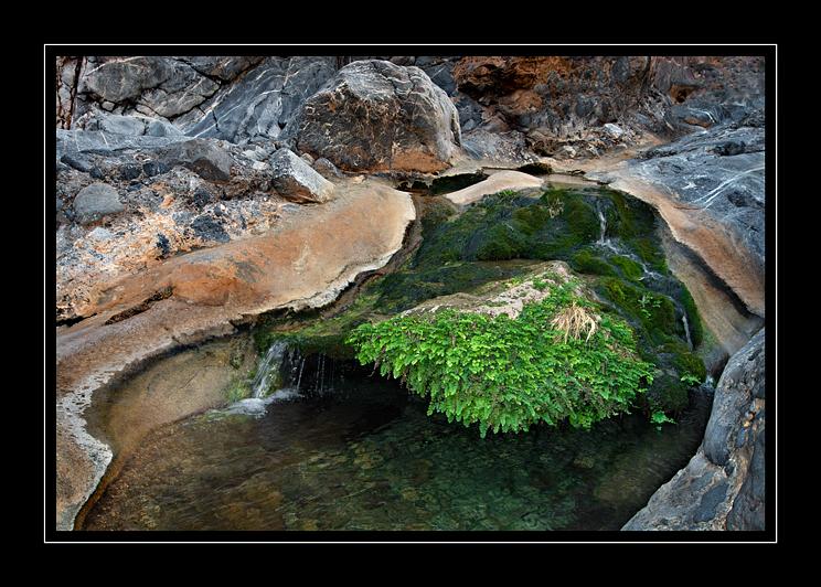 Rock Pool Wadi Qurai