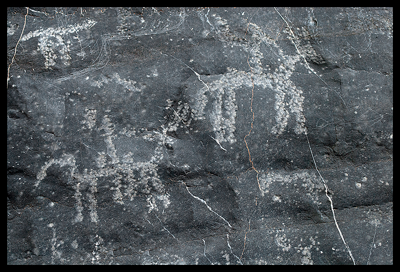 Arabian-Horse-Rock-Art