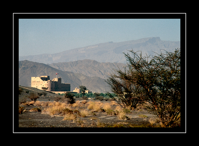 Jabrin-fort-from-a-distance