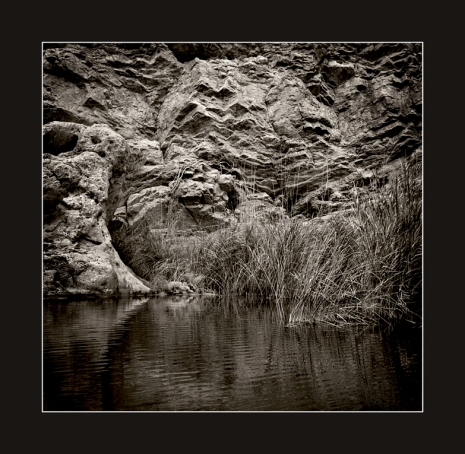 Rock-pool-with-rushes
