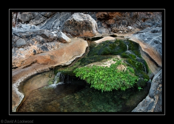Rock Pool Wadi Quria