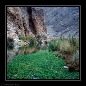 Wadi Arbaeen 2
