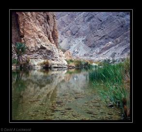 Wadi Arbaeen