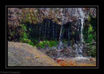 Water & Moss