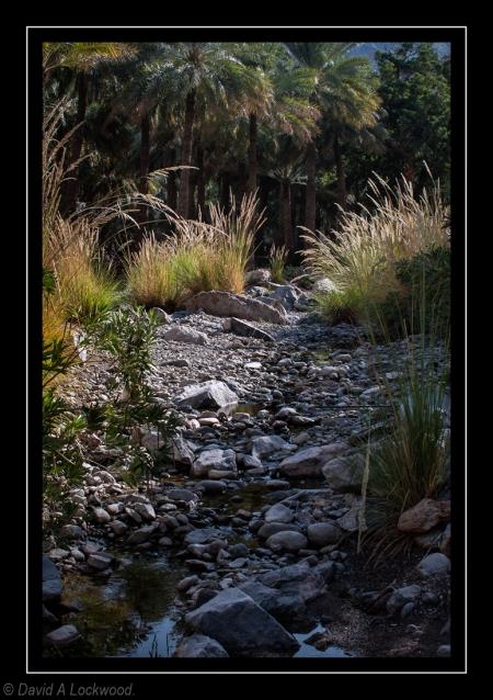 Wadi stream.
