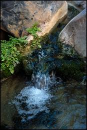 Wadi Qurai. 11