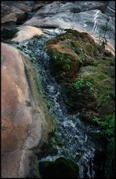 Wadi Qurai. 13
