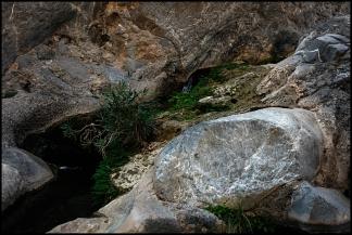 Wadi Qurai. 4