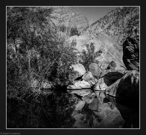 Wadi pool-2