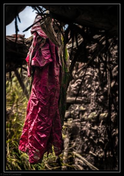 Abandoned dress