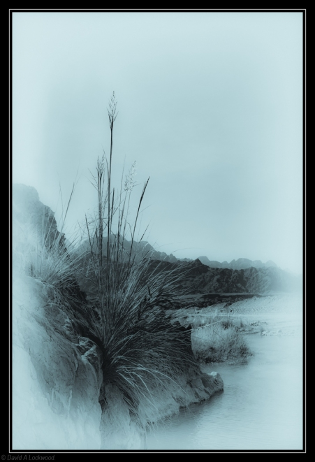 Rushes diffused & toned