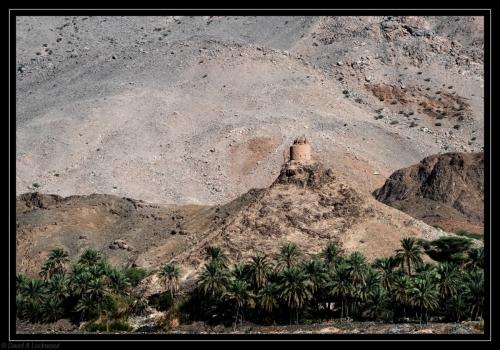 Tower - Wadi Tayeen