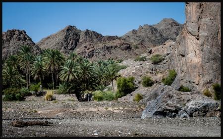 Wadi Tayeen