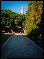 SQGM Gardens No7