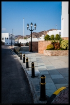 Muscat No4