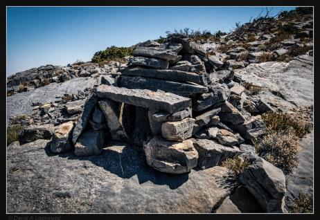 stone-wolf-trap