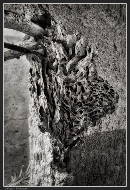 Hornet's nest ?